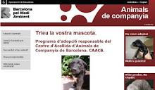 Programa d'adopció responsable del CAAC Barcelona