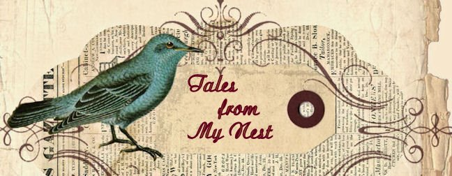 Tales From My Nest