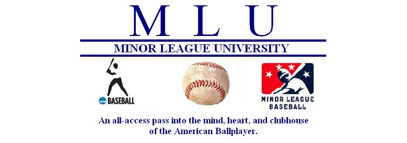 Minor League University