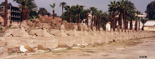 inspiration shot, Karnak, Egypt, Sphinxes, Avenue of Sphinxes