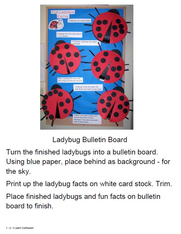 ideas ladybug bulletin board