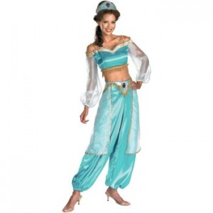 So I went online to find a costume to buy. Problem was all the Jasmine costumes online didnu0027t look anything like her actual outfit!  sc 1 st  JayMay life lessons & JayMay: life lessons: My Princess Jasmine Costume