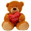 bear angah