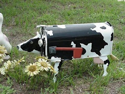 cow mail