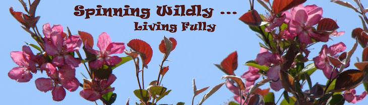 Spinning Wildly, Living Fully