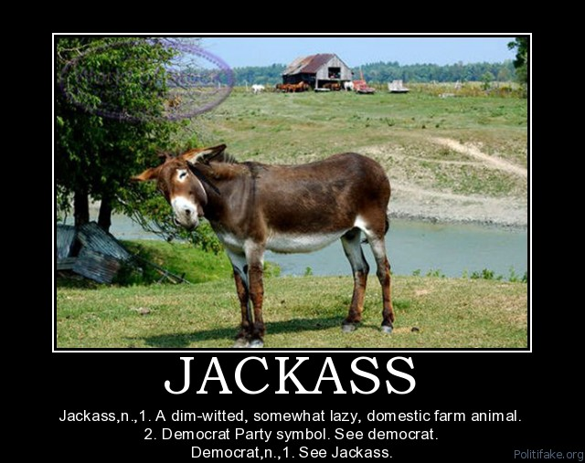 democrat jackass