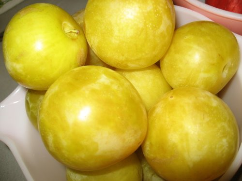 [YellowPlums]