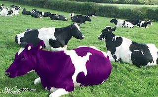 purple-cow-memenangkan persaingan