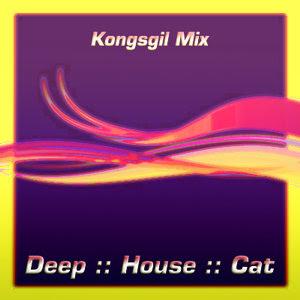Deep House Cat Show    philE :: Jan '10 :: Kongsgil Mix