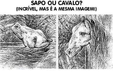 Sapo ou Cavalo