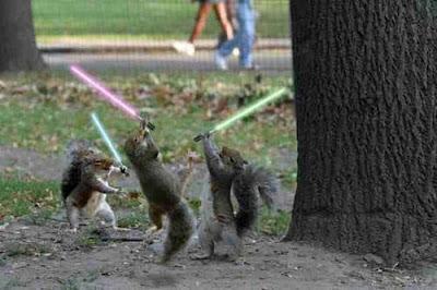 Esquilos Jedi