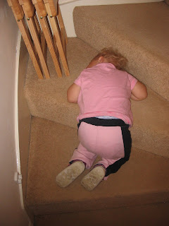 Top Ender asleep on the stairs