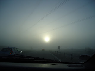 Foggy Morning with Sun Rising