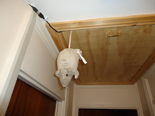 An Ikea Toy Mouse hanging from the loft hatch