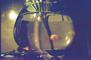 Good Code is like a Glass Fish Bowl