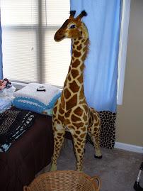 Joe the Giraffe