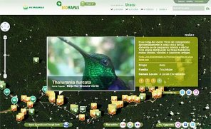 amazonia-petrobras-mapas