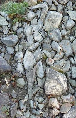 Hidden Lady on Rock Illusion