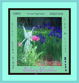 debs garden shop blog