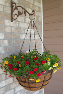 My front porch basket