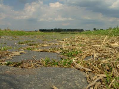 Chemin 002 - Leuze-en-Hainaut - Belgique - Anne-Sarine Limpens - 2008