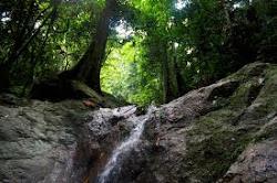 Alam yang hijau boleh menenangkan jiwa..