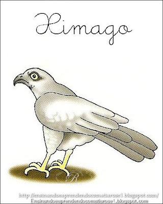 Ximago+1 Alfabeto aprendendo com os animais para crianças