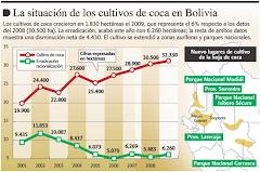 la producción de hojas de coca está por encima de las 32.500 hectáreas