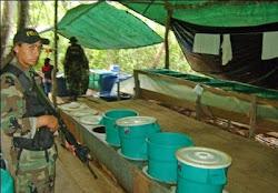 se descubren más y más factorías de cocaína en Bolivia mientras...