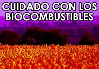 http://1.bp.blogspot.com/_-eIGQY5CqJ8/R4BNHU8x62I/AAAAAAAAAI4/tks1z0S_spQ/s320/biocombustibles_cuidado.jpg