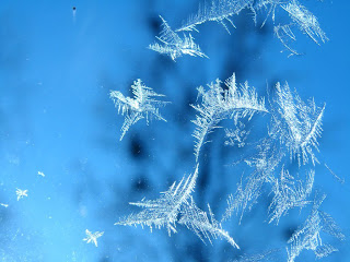 Wallpaper of Snowflakes