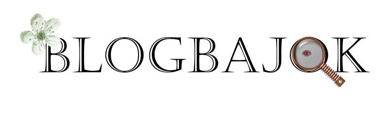 blogbajok
