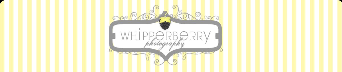 WhipperDesign