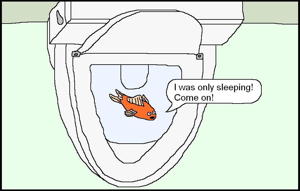 happy goldfish cartoon. That goldfish cartoon.