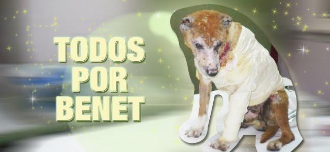 TODOS POR BENET