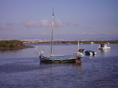 Moita do Ribatejo, Rio Tejo