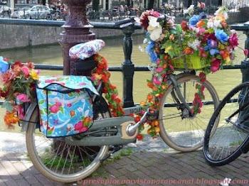 Um blog português na Holanda