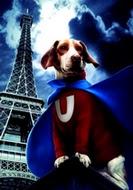 Underdog 2007