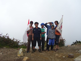 at mt. lawu 3265mdpl