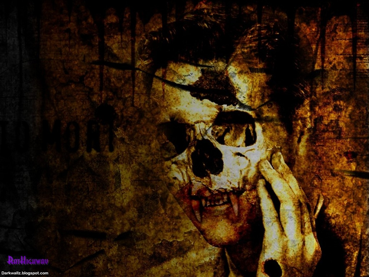Skulls Wallpapers 46 | Dark Wallpaper Download