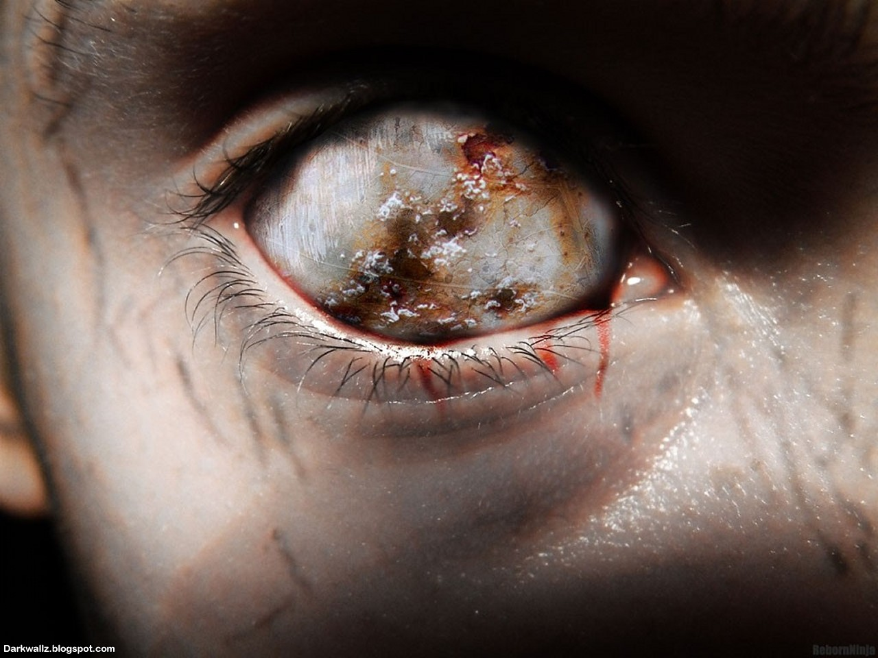 scary eyes Com, wallpapers that pictures scary eyes wallpaper