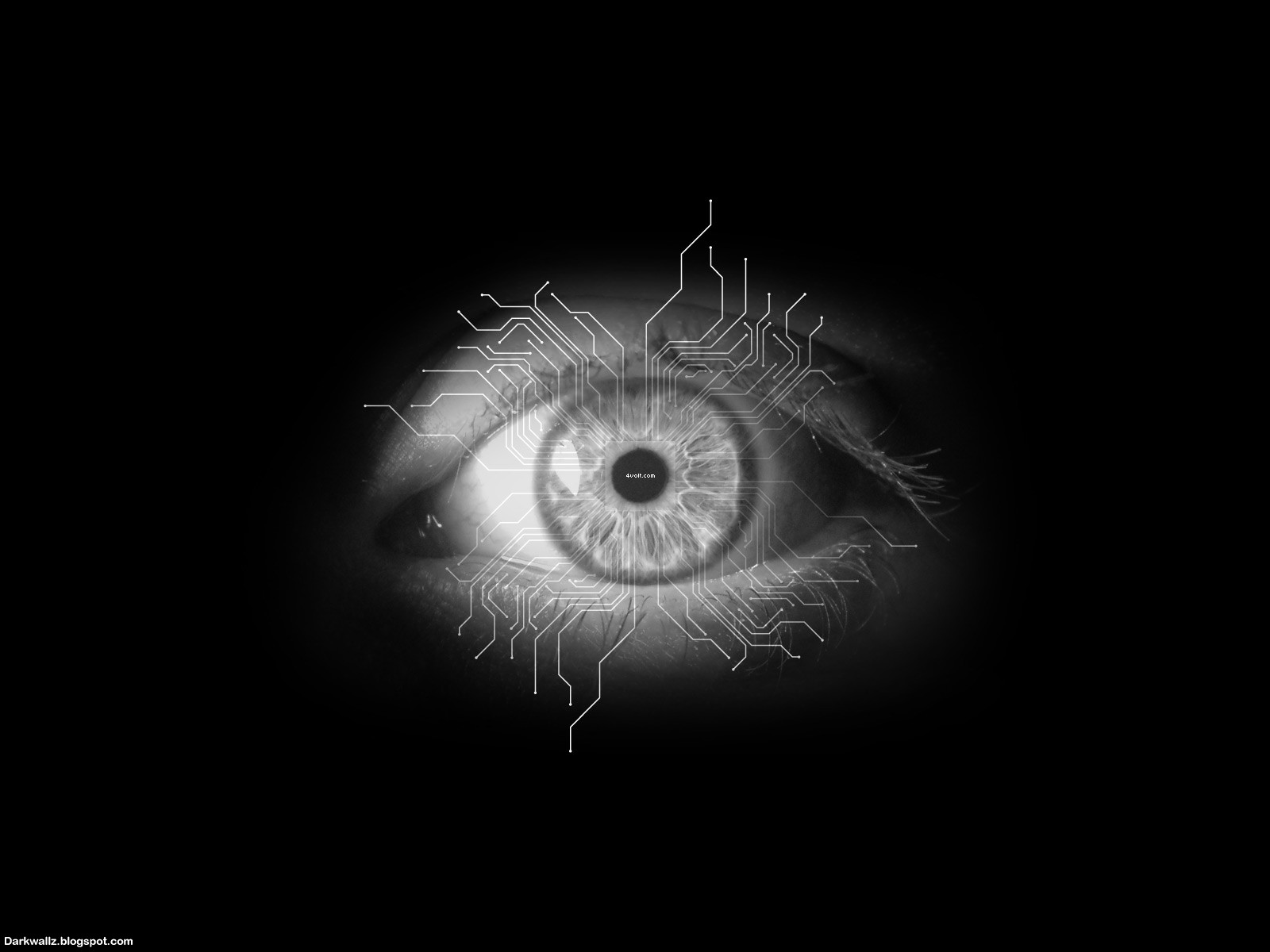 Scary Eyes Wallpapers 59| Dark Wallpaper Download