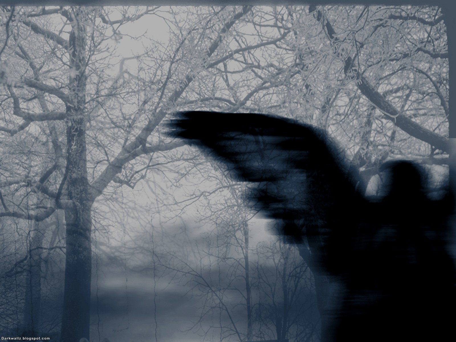 Dark Angel Wallpapers 39 | Dark Wallpaper Download