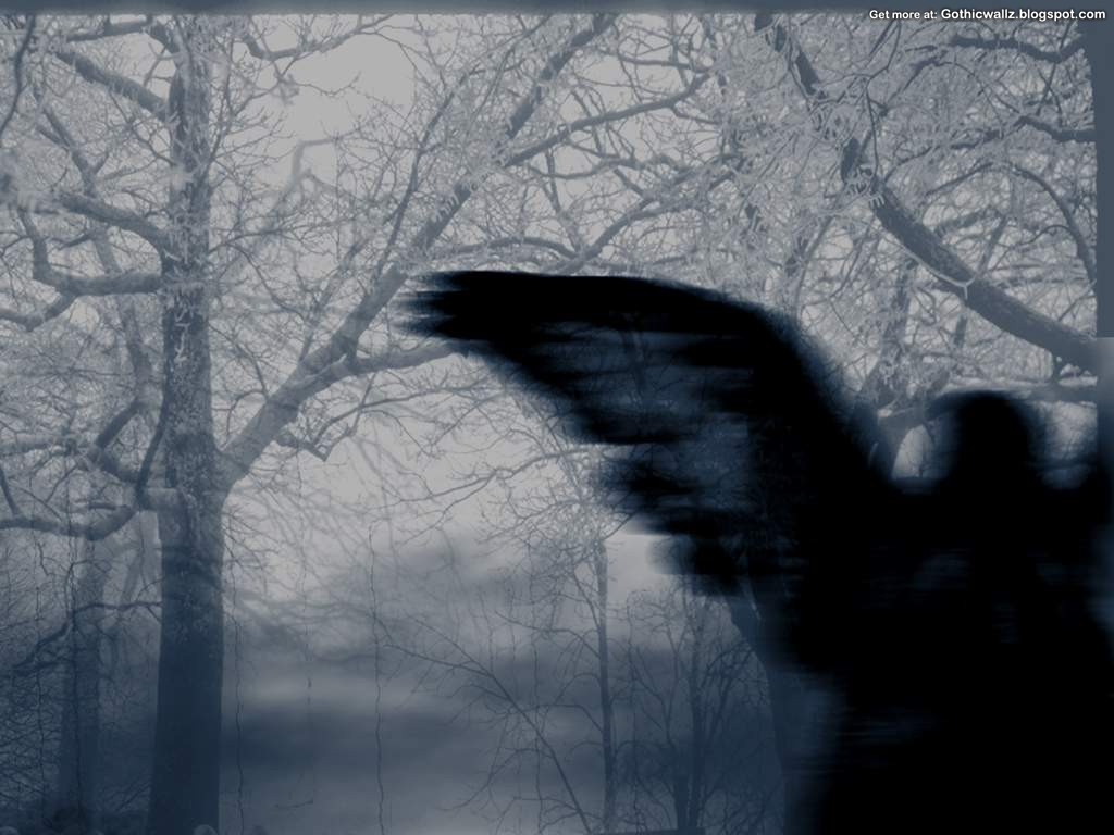 Gothicwallz-Divine_Darkness.jpg