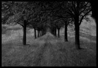 Gothicwallz-Road.jpg