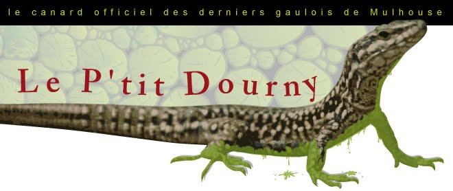 Mulhouse Dornach