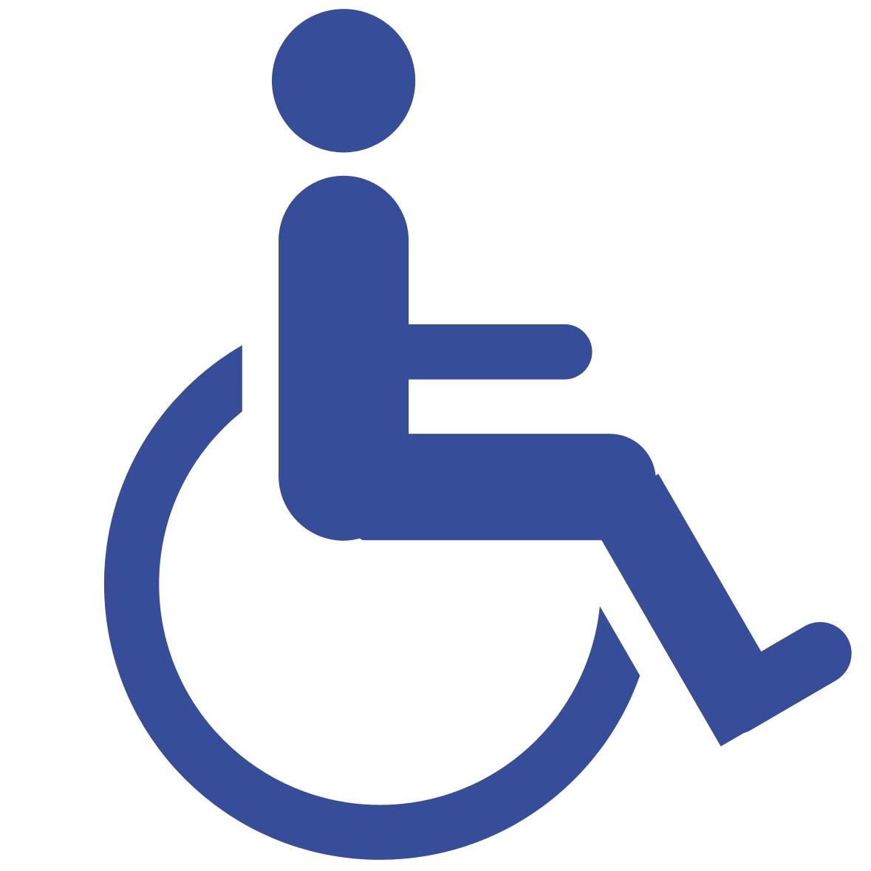 libre estacionamiento para discapacitados oblea nacional