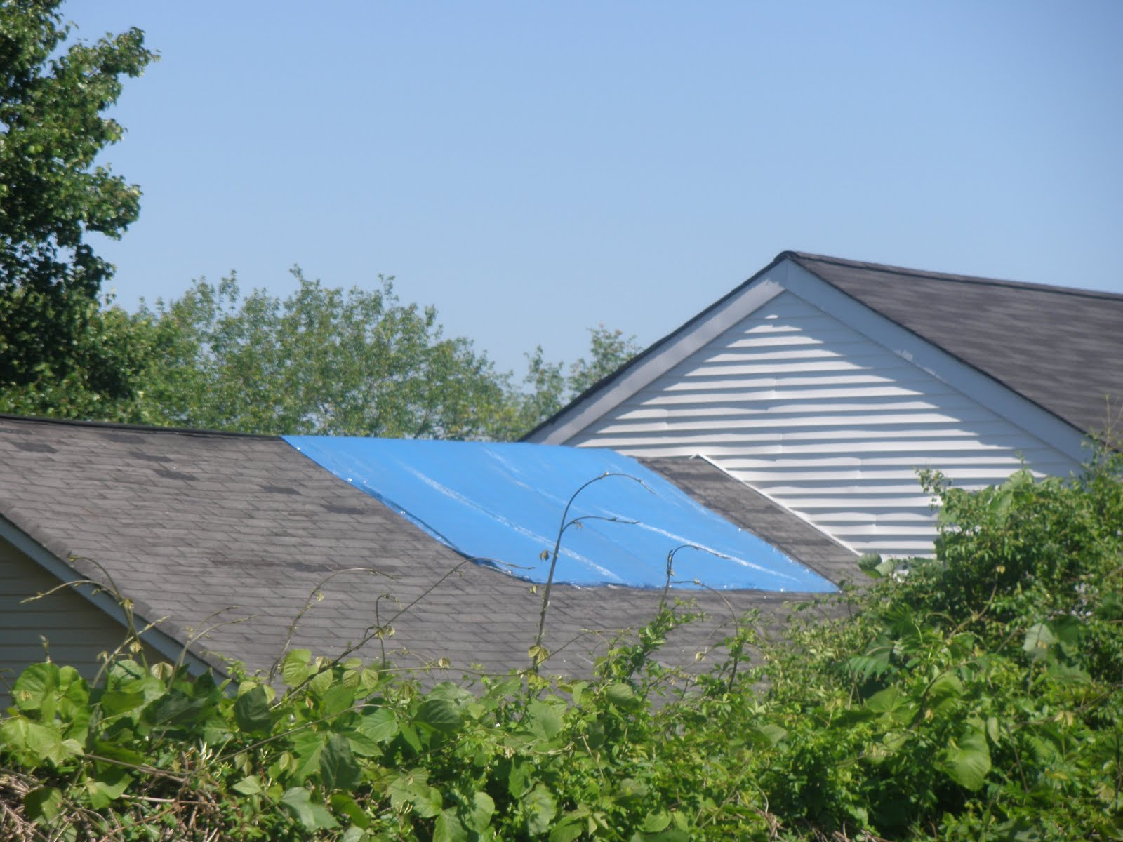 All Over Town, We Keep Noticing Homes With Blue Tarps On The Roof. Do You  Have A Leak? Or Storm Damage? If So, Moisture Can Still Be Getting Into  Your Home, ...