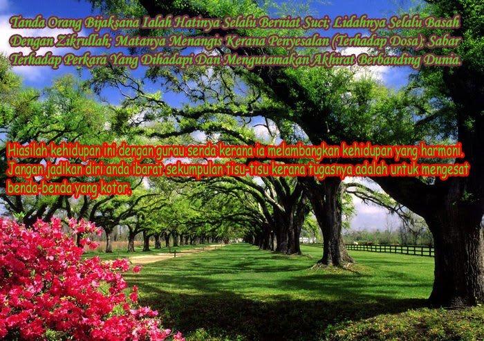 Jimak Sedap http://teratakimpianibu.blogspot.com/2010/08/panduan