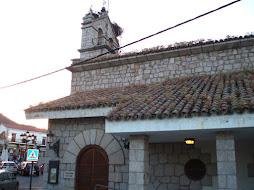 Foto denuncia: Hierba en el tejado del Teatro
